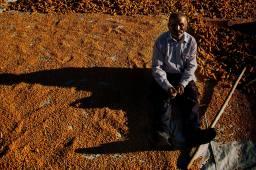 budakdere köyü- mısır kurutma